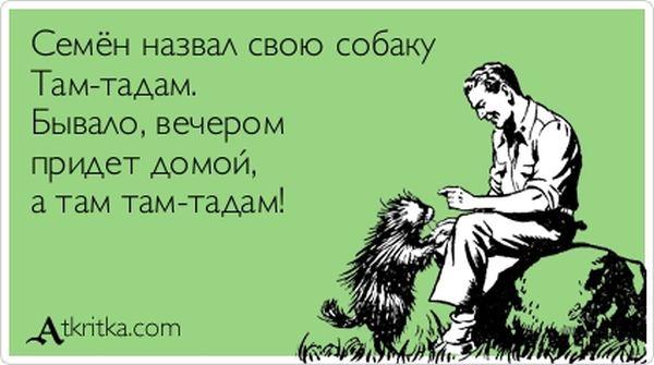 Семён назвал свою собаку Там-тадам