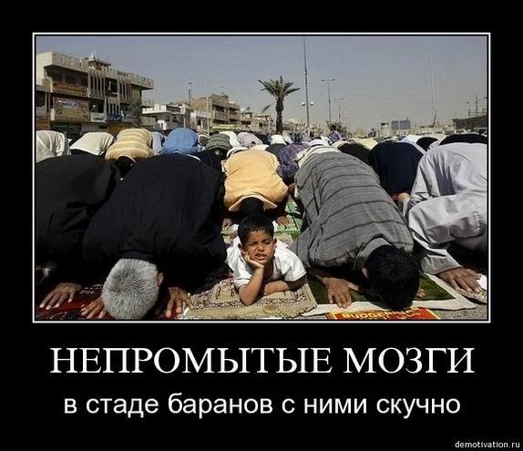 http://jokesland.net.ru/dem/demotivators/43.jpg