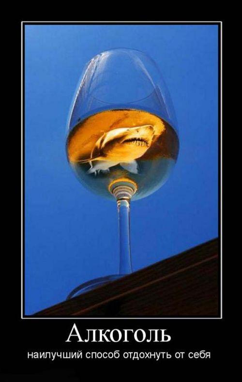 Алкоголь наилучший способ отдохнуть от себя
