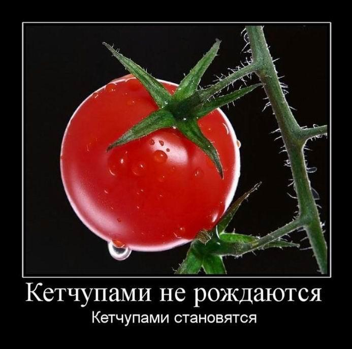 Кетчупами не рождаются, кетчупами становятся