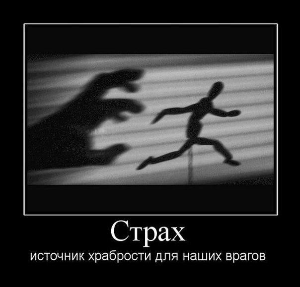 Страх, источник храбрости для наших врагов