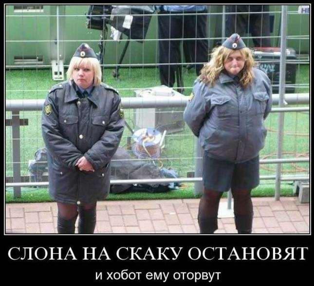 http://jokesland.net.ru/dem/demotivatory_187/18.jpg