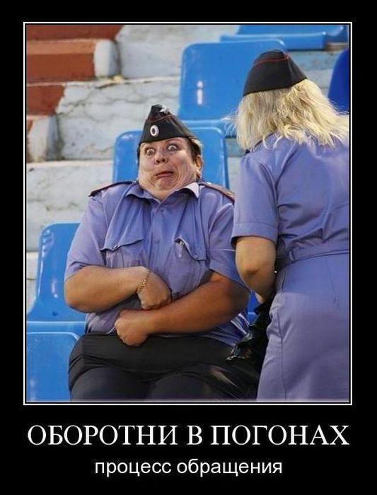 http://jokesland.net.ru/dem/demotivatory_193/11.jpg