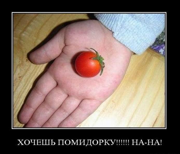 Хочешь помидорку?