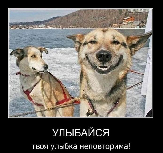 Улыбайся. Твоя улыбка неповторима!