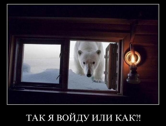 Так я войду или как?