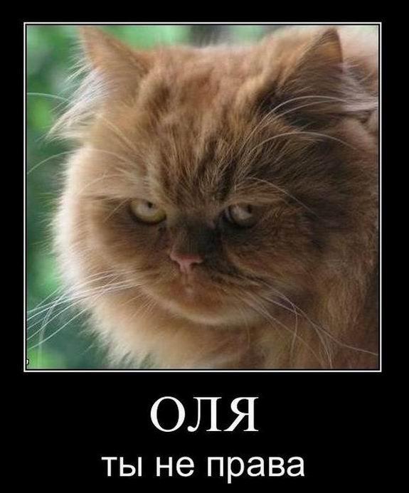 Оля, ты не права!