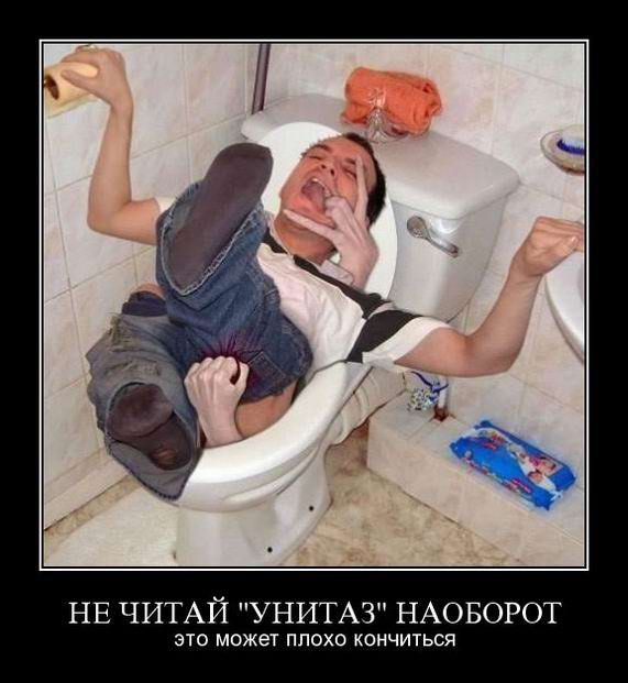 Не читай «Унитаз» наоборот