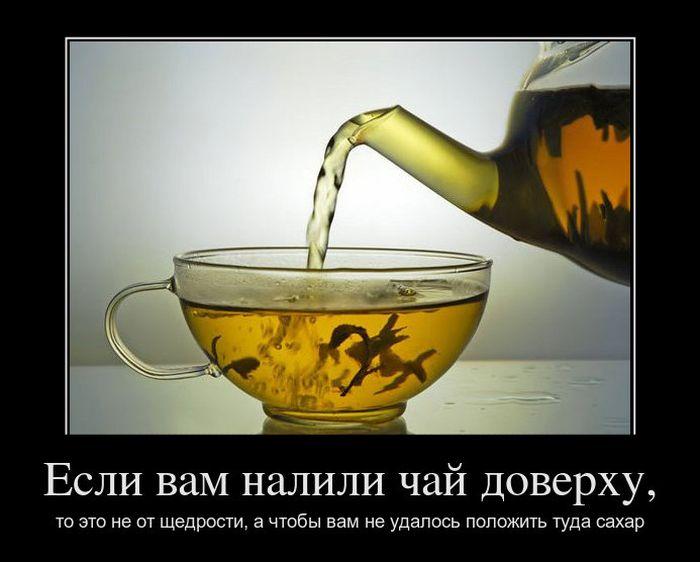 Демотиваторы про Владимира Жириновского, преданность и никто кроме нас (406 часть, 50 фотографий)