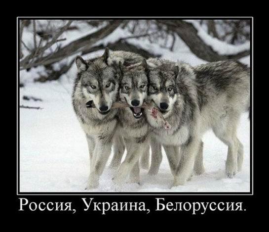 Россия, Украина, Белоруссия