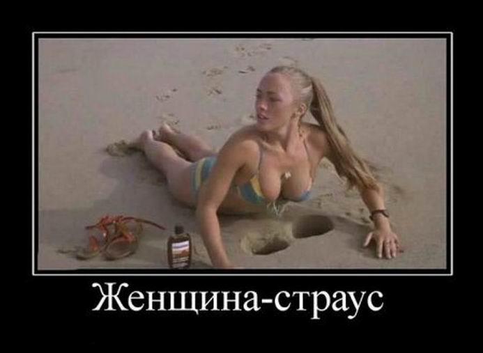 http://jokesland.net.ru/dem/demotivatory_456/26.jpg