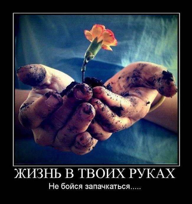 Жизнь в твоих руках. Не бойся запачкаться...