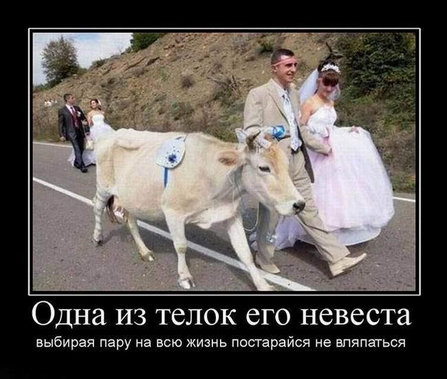 Одна из телок его невеста
