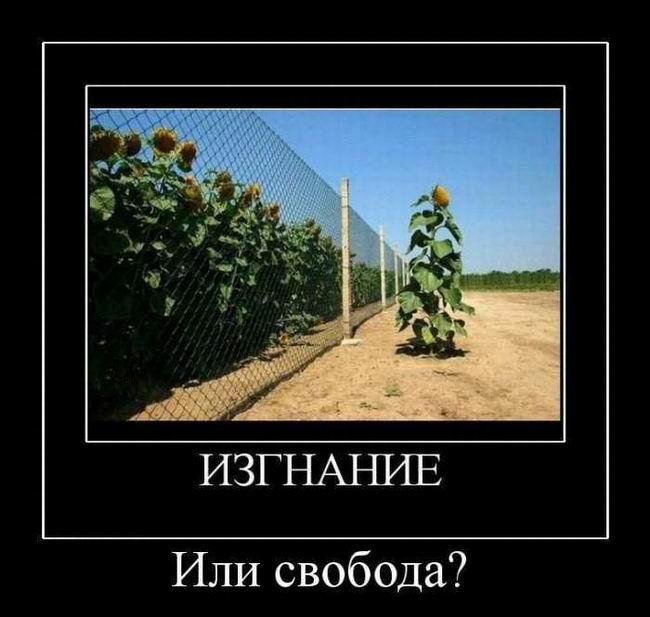 Изгнание или свобода
