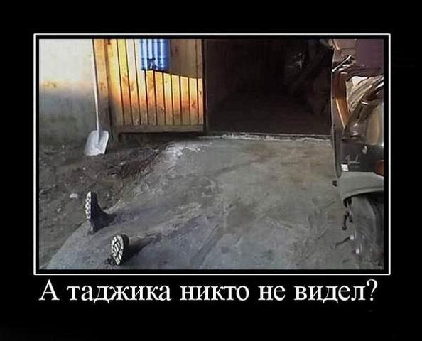 А таджика никто не видел?
