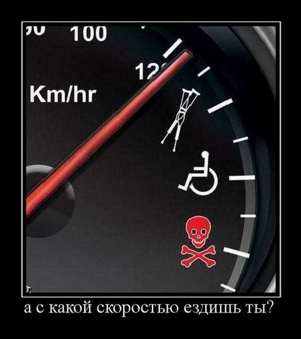 А с какой скоростью ездишь ты?
