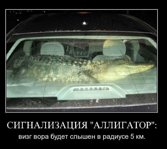 Автомобильная сигнализация «Живой крокодил»