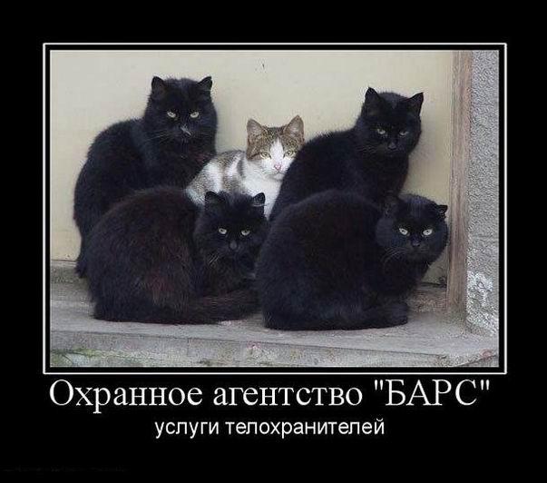 Охранное агентство «БАРС». Услуги телохранителей