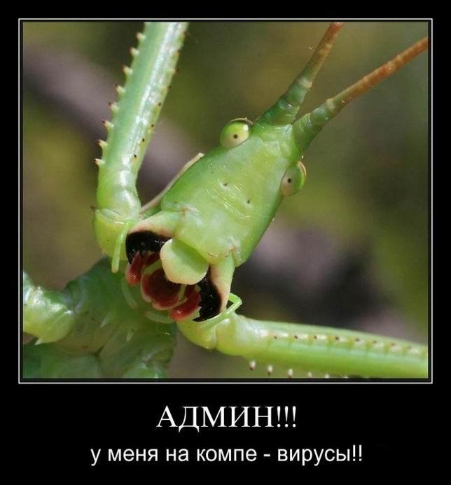Админ! У меня на компе - вирусы!