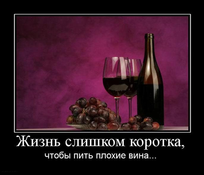 Жизнь слишком коротка, чтобы пить плохие вина...