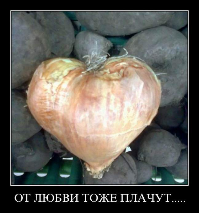 От любви тоже плачут