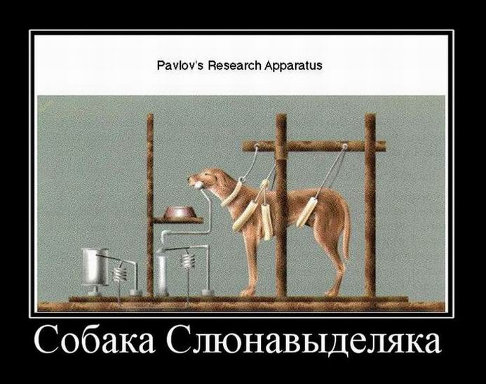Pavlov`s Research Apparatus