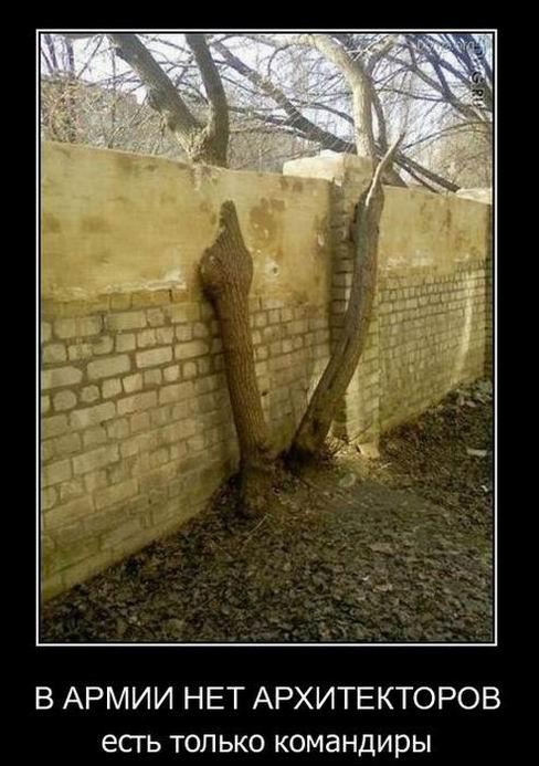 В армии нет архитекторов