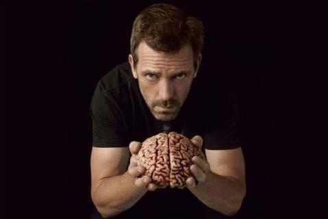 Мужской мозг на 10% больше женского