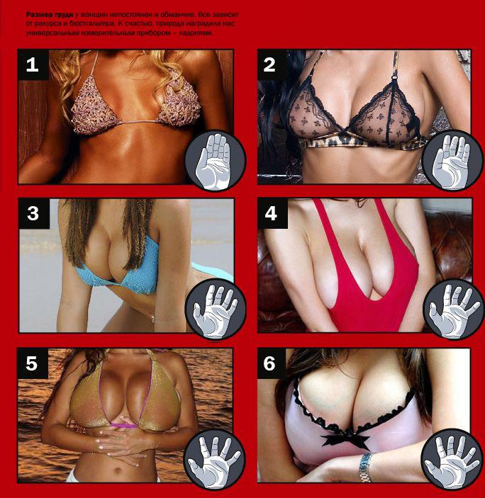 Немного женской груди