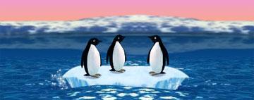 Пингвины (flash игра)