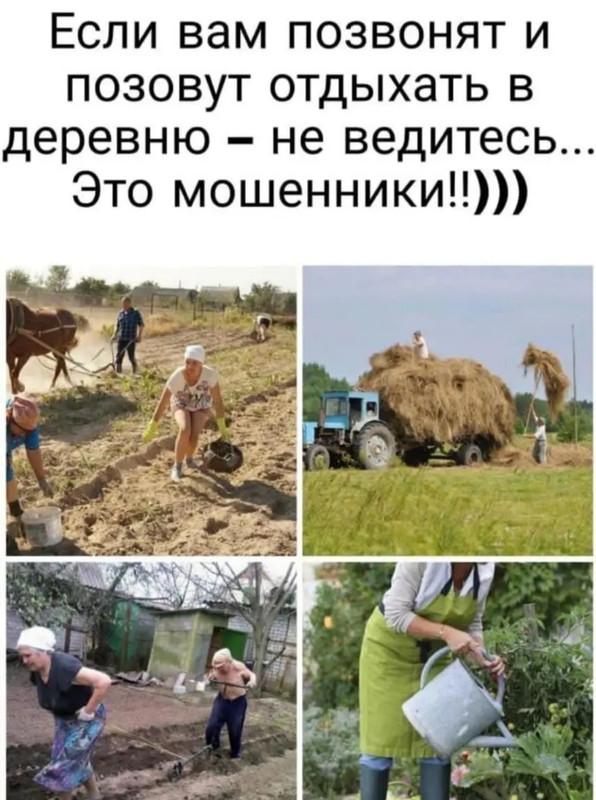 Если позовут отдыхать в деревню
