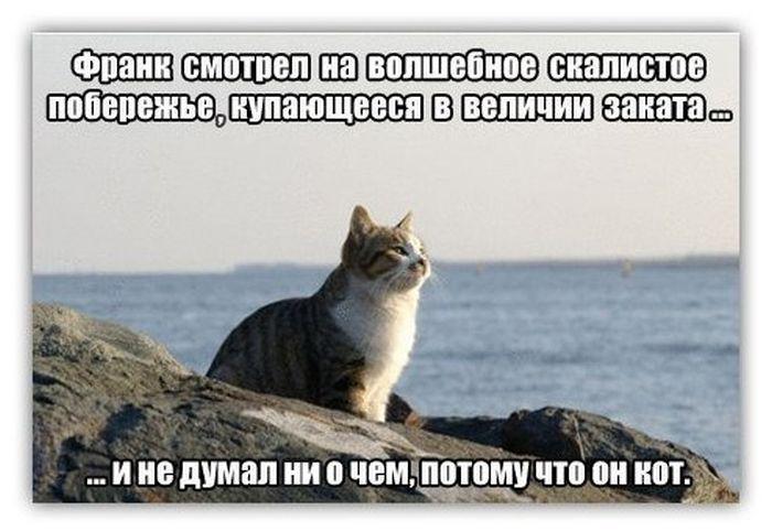Подборка прикольных фото про воинскую службу, Шуфутинского и знакомства в маршрутке (116 фото)