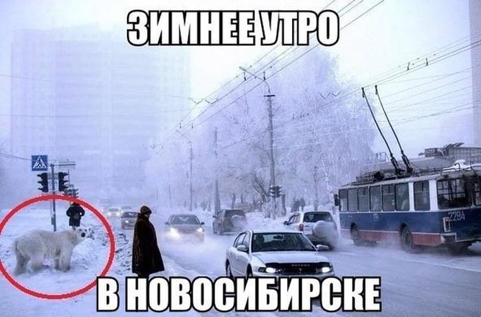 Зимнее утро в Новосибирске