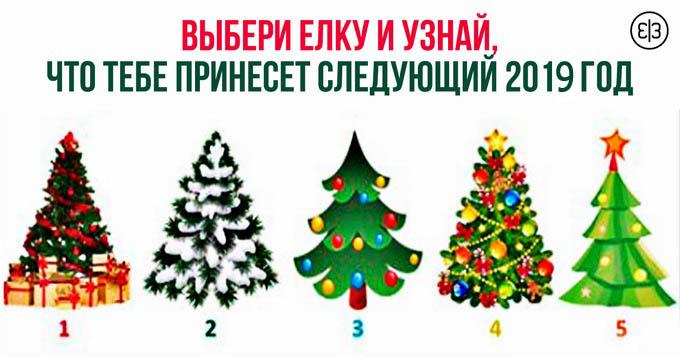 Выбери елку и узнай, что тебе принесет следующий 2019 год Свиньи