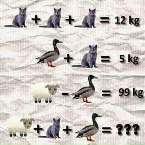 Задачка только самых сообразительных интересная загадка