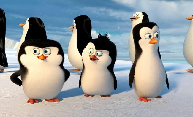 Девчонки! Помните, что пингвины...