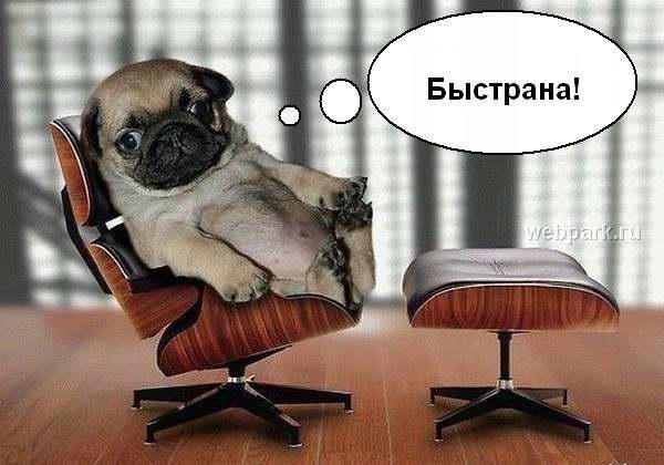 шеф у себя в кабинете