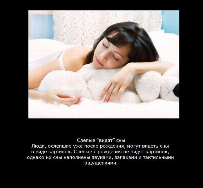 Факты про сон (9 фотографий)