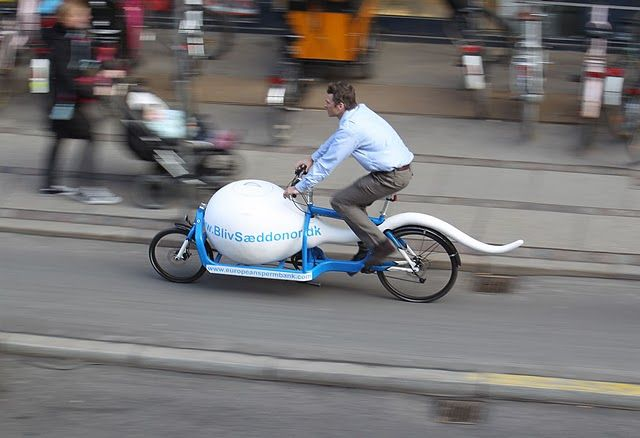 Сперматозоиды мужчин Копенгагена путешествуют с комфортом