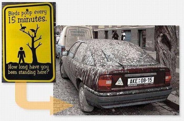 Странные дорожные знаки и их расшифровка