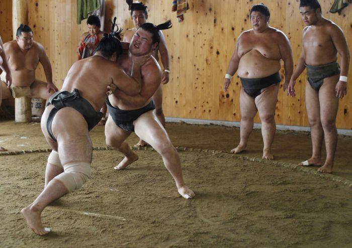 Тренировка сумоистов у Фукусимы (24 фотографии)
