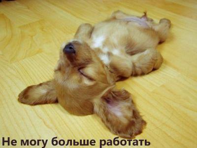 Урааа, сегодня пятница!