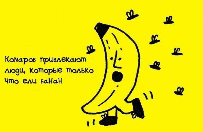Банан Георгий никогда не думал о смысле жизни