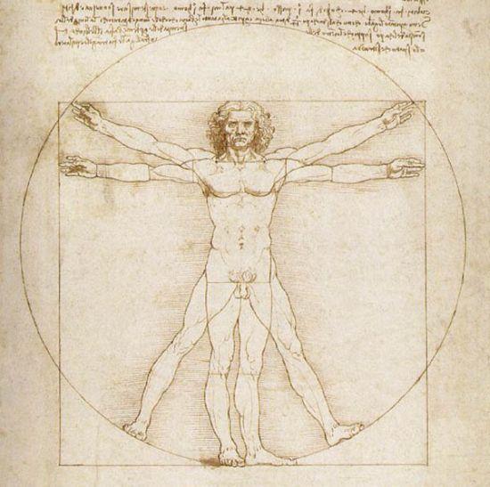 Бесполезные органы человеческого тела (5 картинок + текст)