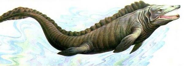 если бы первые животные, вышедшие из океана на сушу, обладали бы шестью конечностями, а не четырьмя