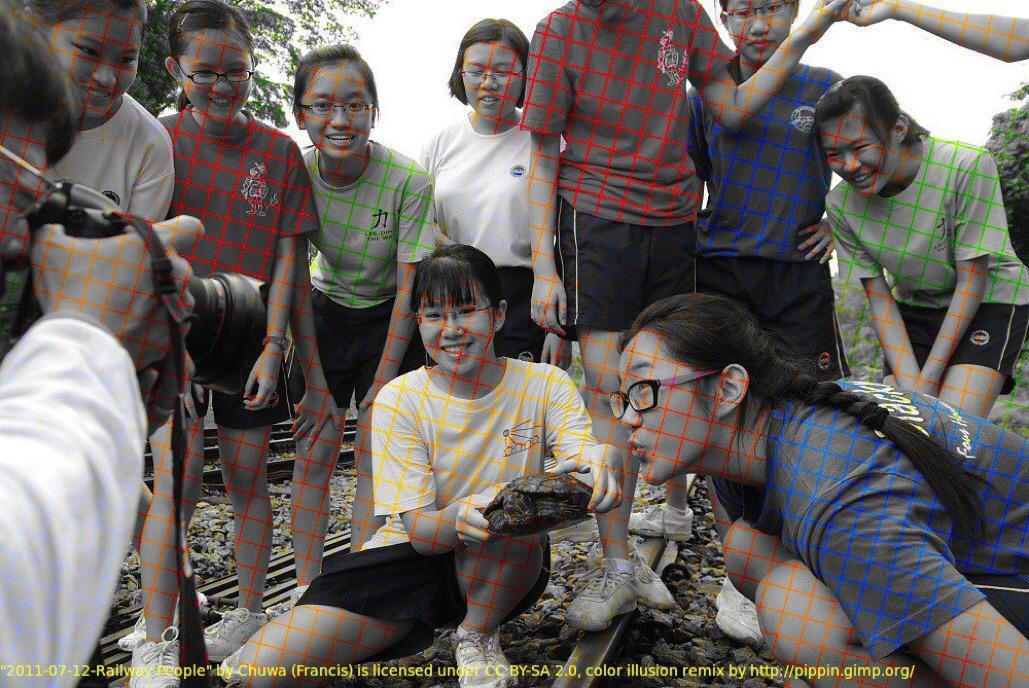 Оптическая иллюзия: черно-белое фото, которое кажется цветным