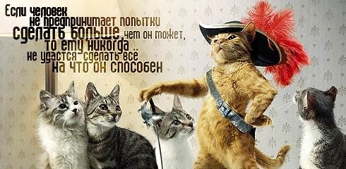 http://jokesland.net.ru/pc/kartinki_smysl/2.jpg
