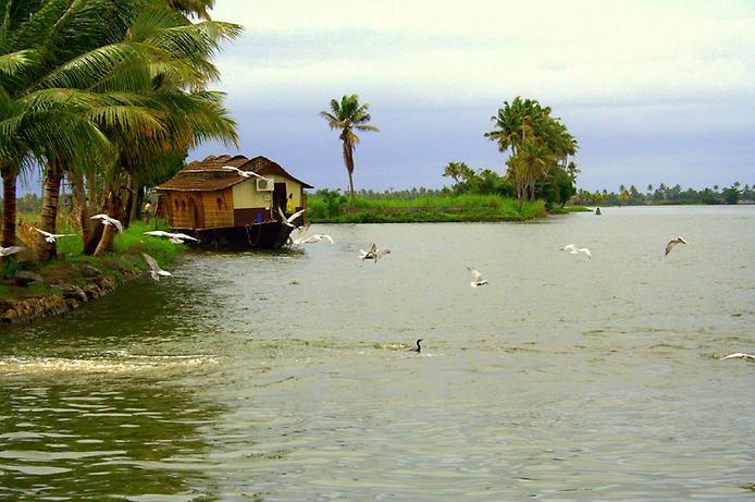 Керала. Райский тропический уголок (12 фото)