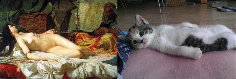 Коты и искусство - вдохновение в простом (20 фото)