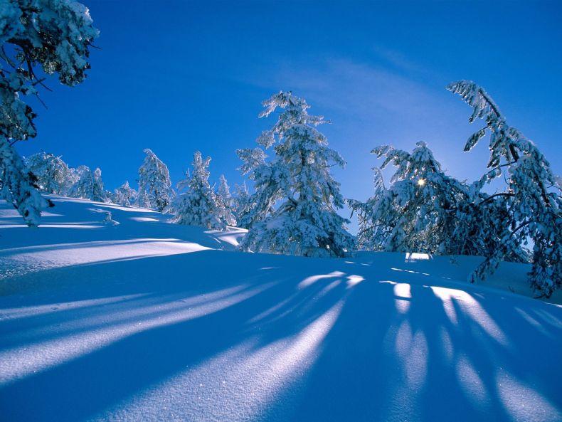 Скажем зиме ДО СВИДАНИЯ! - Красавица зима (40 фото)